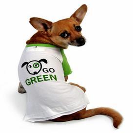 Dog Wearing Go Green Shirt