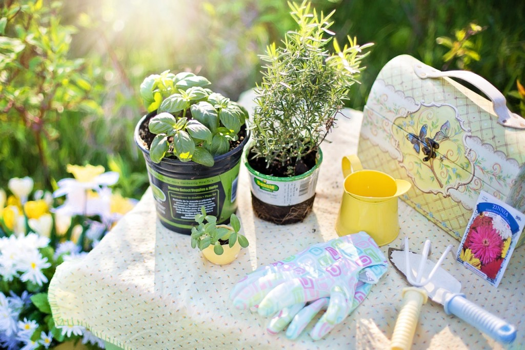 planting-780736_1280